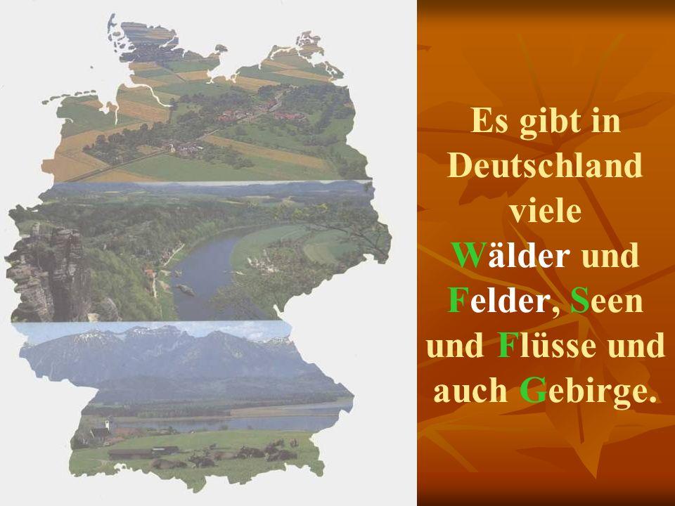 Die Staatsflagge Deutschlands ist schwarz-rot-golden. Das Wappen ist ein einköpfiger Adler.