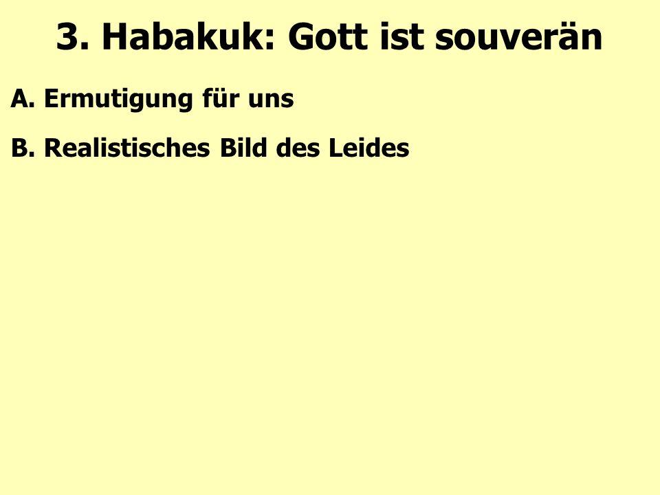 A. Ermutigung für uns B. Realistisches Bild des Leides 3. Habakuk: Gott ist souverän