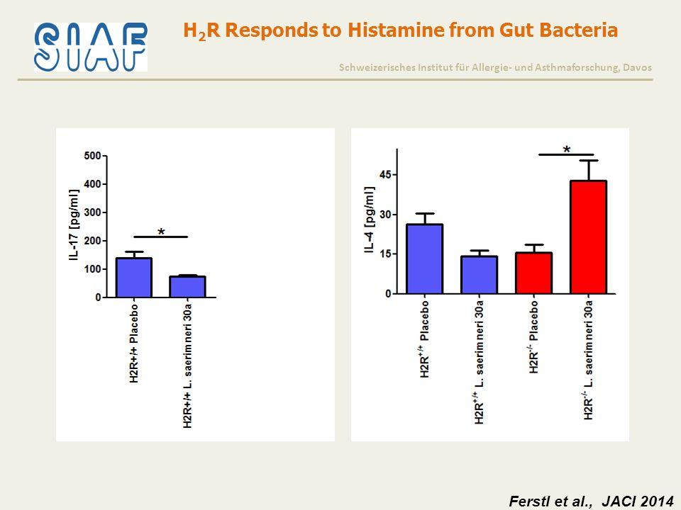H 2 R Responds to Histamine from Gut Bacteria Schweizerisches Institut für Allergie- und Asthmaforschung, Davos Ferstl et al., JACI 2014