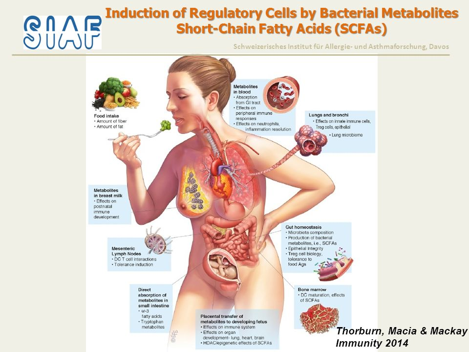Induction of Regulatory Cells by Bacterial Metabolites Short-Chain Fatty Acids (SCFAs) Thorburn, Macia & Mackay Immunity 2014 Schweizerisches Institut
