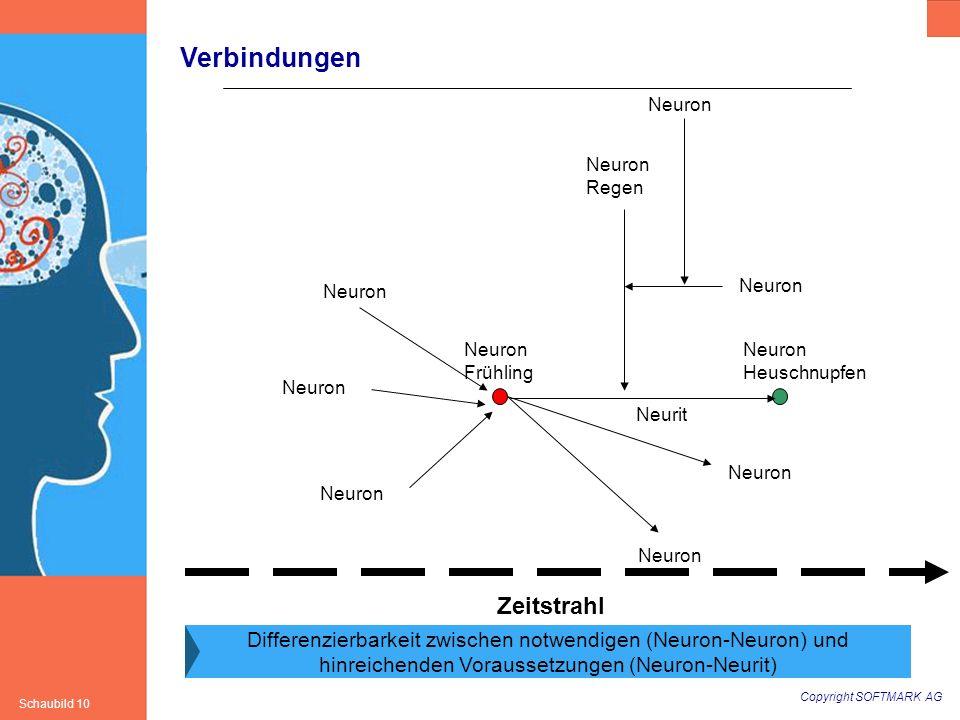 Copyright SOFTMARK AG Schaubild 10 Verbindungen Neuron Frühling Neuron Heuschnupfen Neuron Zeitstrahl Neuron Neurit Neuron Regen Differenzierbarkeit z