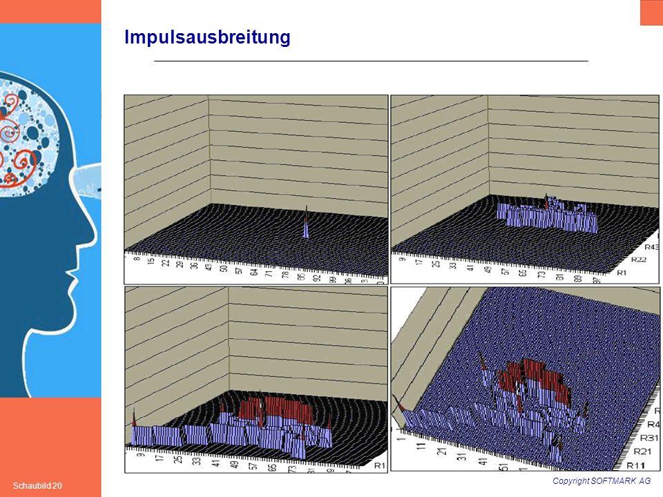 Copyright SOFTMARK AG Schaubild 20 Dynamik Impulsausbreitung