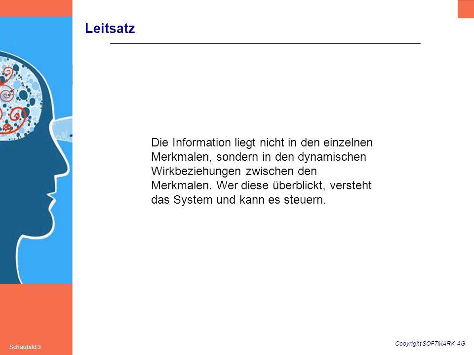 Copyright SOFTMARK AG Schaubild 3 Leitsatz Die Information liegt nicht in den einzelnen Merkmalen, sondern in den dynamischen Wirkbeziehungen zwischen