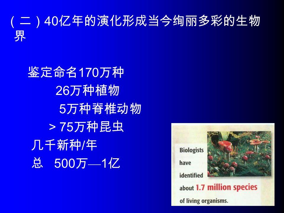 (二) 40 亿年的演化形成当今绚丽多彩的生物 界 鉴定命名 170 万种 26 万种植物 5 万种脊椎动物 > 75 万种昆虫 几千新种 / 年 总 500 万 — 1 亿