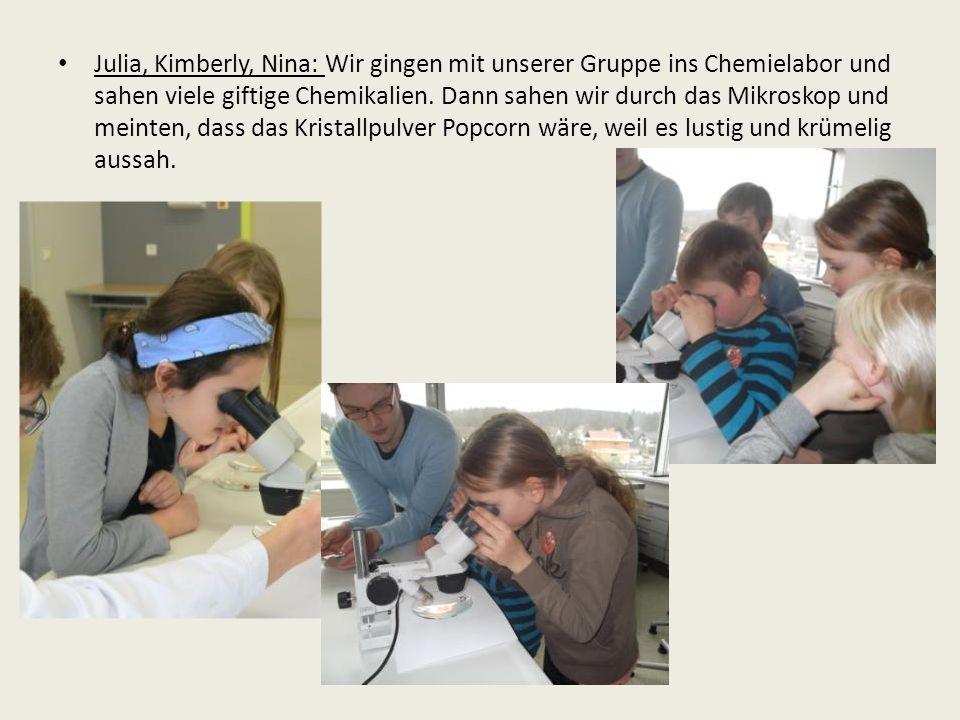 Julia, Kimberly, Nina: Wir gingen mit unserer Gruppe ins Chemielabor und sahen viele giftige Chemikalien.