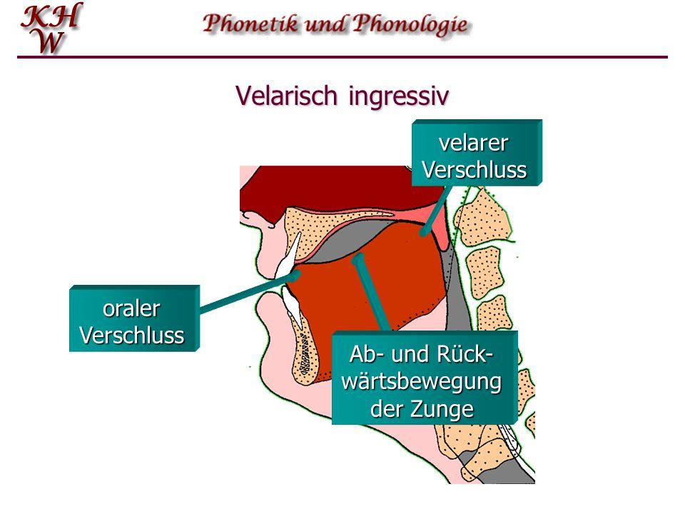 Velarisch ingressiv oraler Verschluss velarer Verschluss