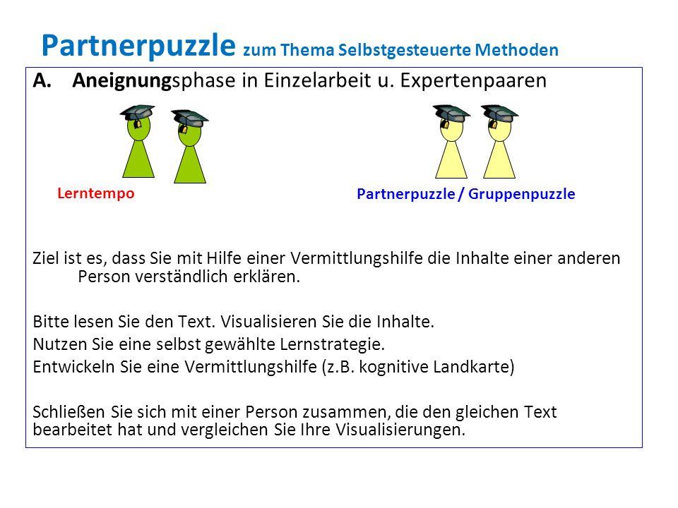 Partnerpuzzle zum Thema Selbstgesteuerte Methoden A.