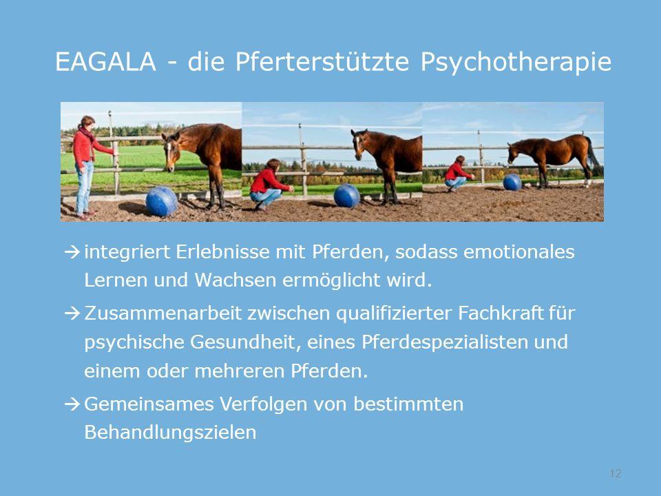 integriert Erlebnisse mit Pferden, sodass emotionales Lernen und Wachsen ermöglicht wird.  Zusammenarbeit zwischen qualifizierter Fachkraft für psy