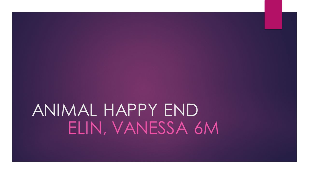 ANIMAL HAPPY END ELIN, VANESSA 6M