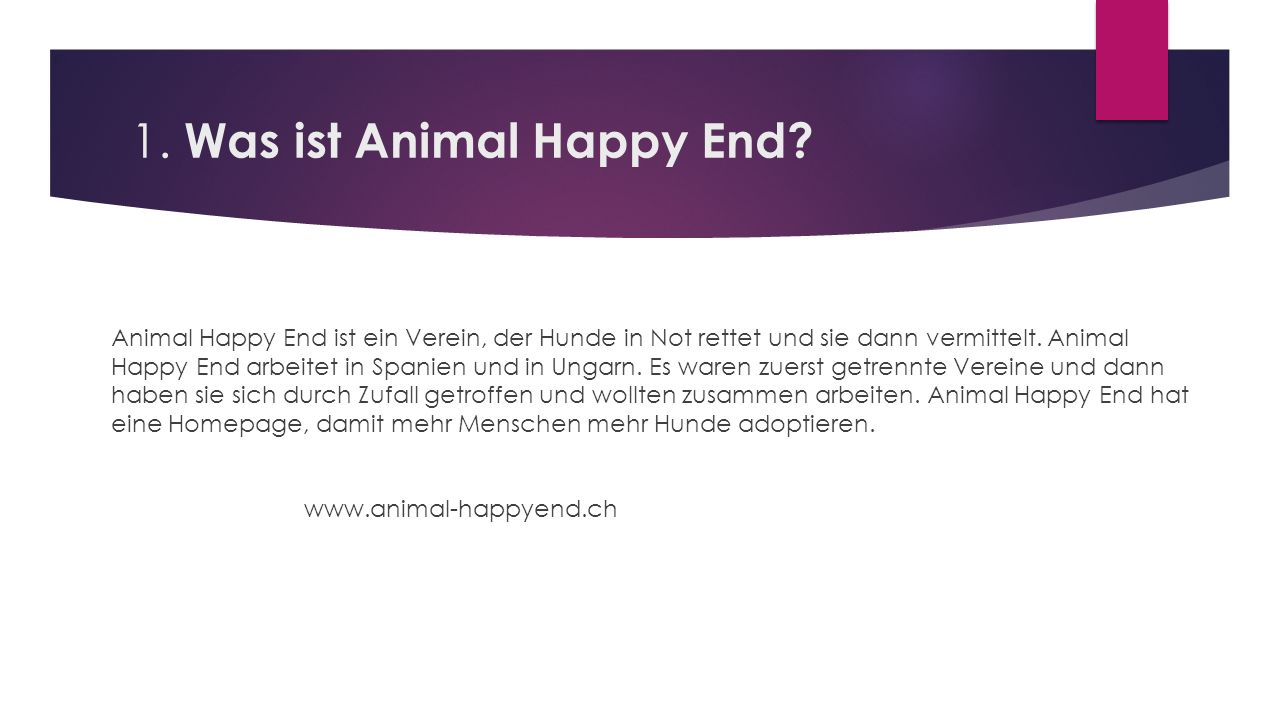 1. Was ist Animal Happy End.