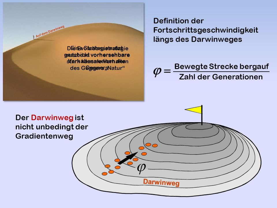 """Bewegte Strecke bergauf Zahl der Generationen    Definition der Fortschrittsgeschwindigkeit längs des Darwinweges  Der Darwinweg ist nicht unbedingt der Gradientenweg Darwinweg Auf dem Darwinweg Eine Strategie nutzt geschickt vorhersehbare Verhaltensweisen des Gegners Die Evolutionsstrategie nutzt das vorhersehbare stark kausale Verhalten des Gegners """"Natur"""