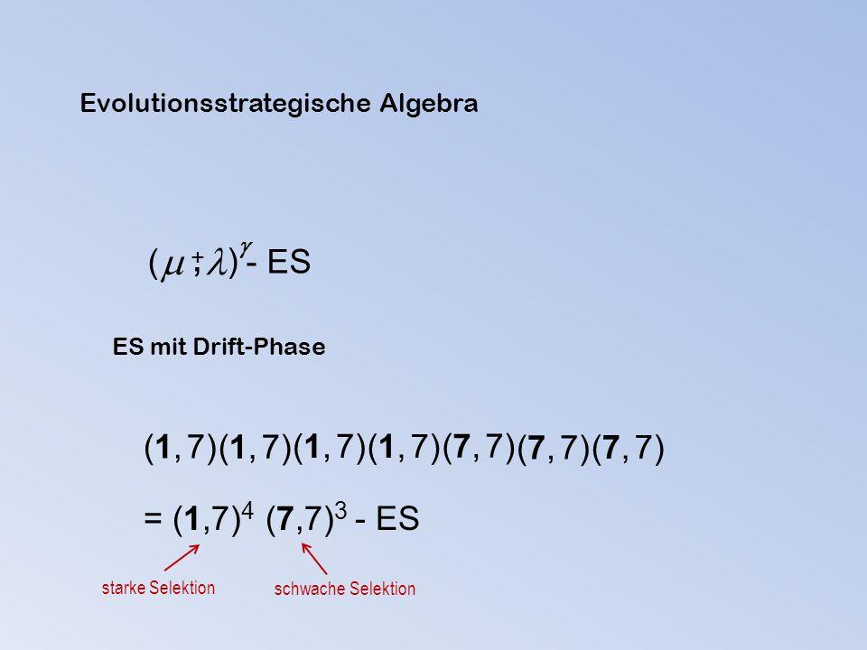  ( ) - ES  +, ES mit Drift-Phase (1, 7) (7, 7) = (1,7) 4 (7,7) 3 - ES starke Selektion schwache Selektion Evolutionsstrategische Algebra