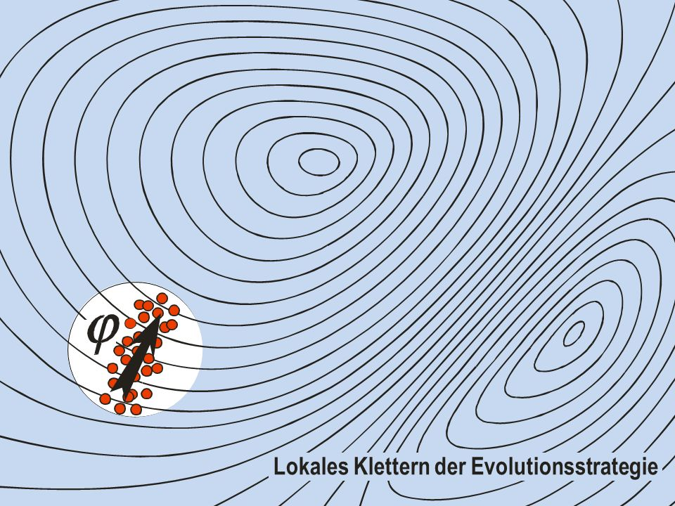 Lokales Klettern der Evolutionsstrategie