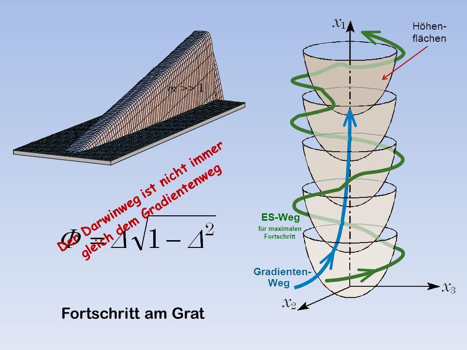 Gradienten- Weg ES-Weg für maximalen Fortschritt Fortschritt am Grat Höhen- flächen Der Darwinweg ist nicht immer gleich dem Gradientenweg m >> 1