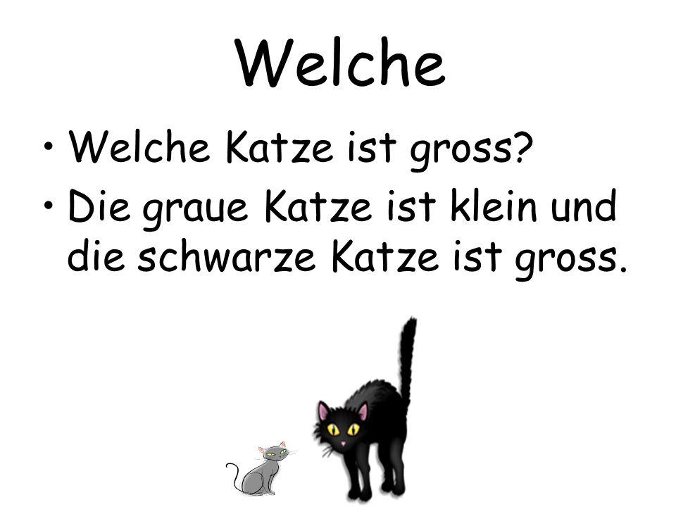 Welche Welche Katze ist gross? Die graue Katze ist klein und die schwarze Katze ist gross.
