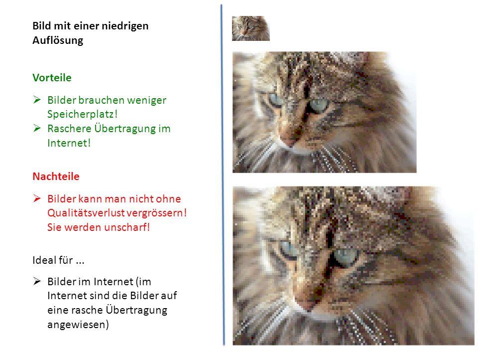 Bild mit einer niedrigen Auflösung  Bilder brauchen weniger Speicherplatz!  Raschere Übertragung im Internet!  Bilder kann man nicht ohne Qualitäts