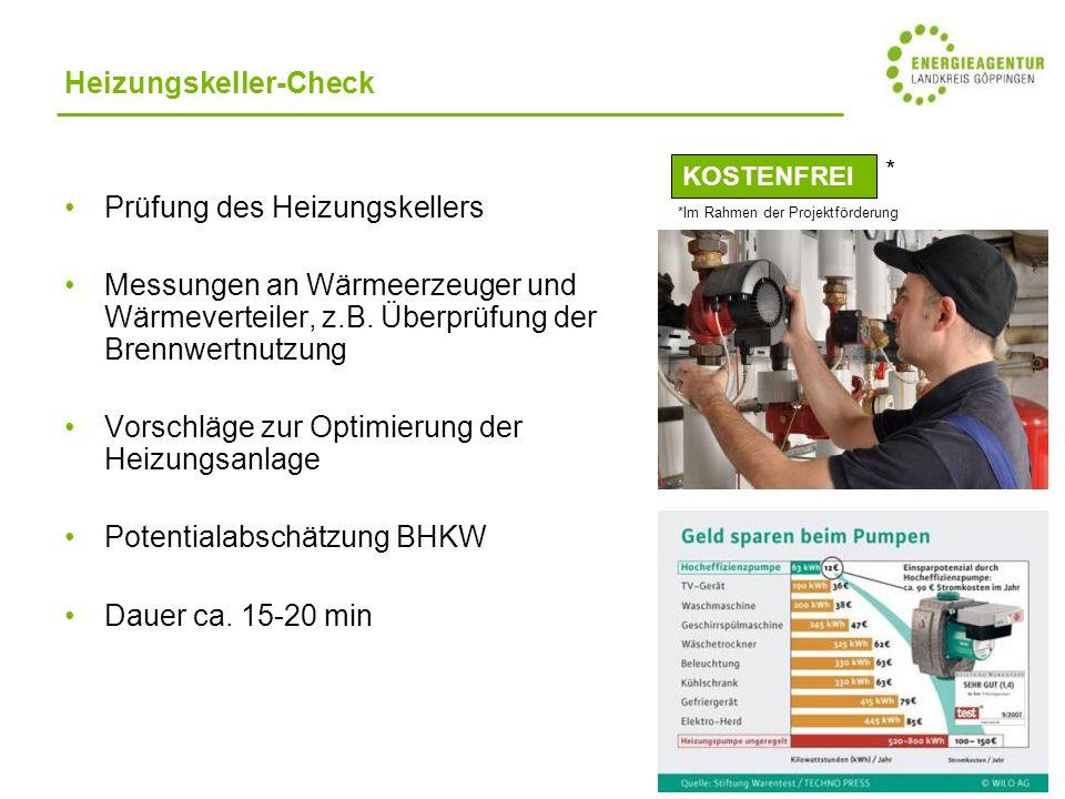Heizungskeller-Check Prüfung des Heizungskellers Messungen an Wärmeerzeuger und Wärmeverteiler, z.B.