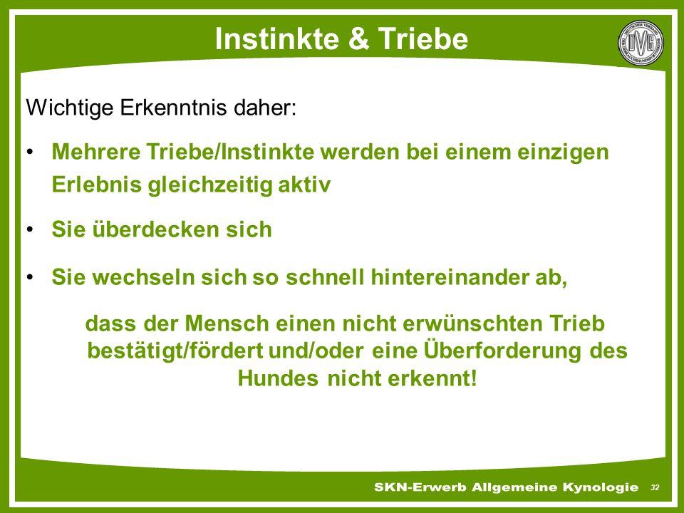 32 Instinkte & Triebe Wichtige Erkenntnis daher: Mehrere Triebe/Instinkte werden bei einem einzigen Erlebnis gleichzeitig aktiv Sie überdecken sich Si