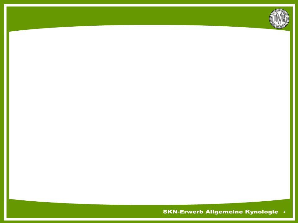 85 Unfallverhütung Wie können Unfälle vermieden werden Platzanlage auf Verletzungsquellen kontrollieren Gesundheitszustand des Teams berücksichtigen Bodenbeschaffenheit beachten Witterungsverhältnisse Nicht trainierende Kinder vom Trainingsbetrieb fernhalten Schutzkleidung des Helfers muss komplett sein Erste Hilfe Kästen bereit halten Ersthelfer vor Ort haben Geräte regelmäßig kontrollieren …