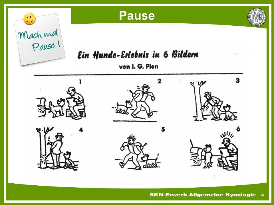49 Pause