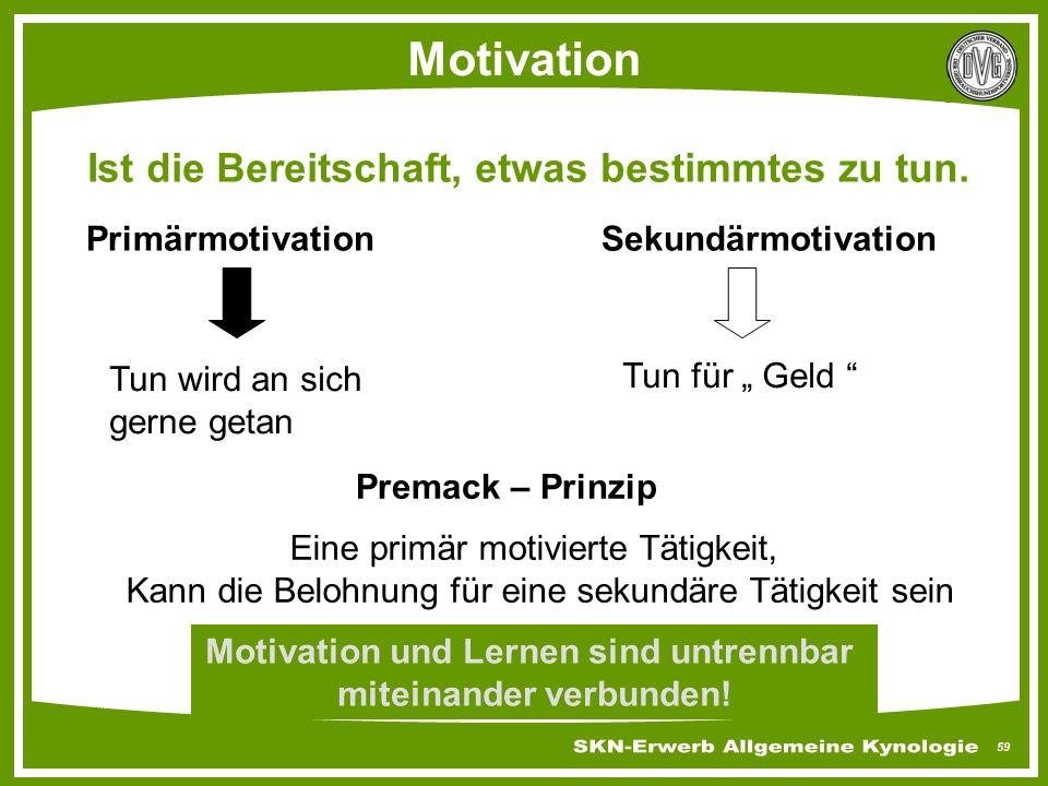 """59 Motivation Ist die Bereitschaft, etwas bestimmtes zu tun. PrimärmotivationSekundärmotivation Tun wird an sich gerne getan Tun für """" Geld """" Premack"""