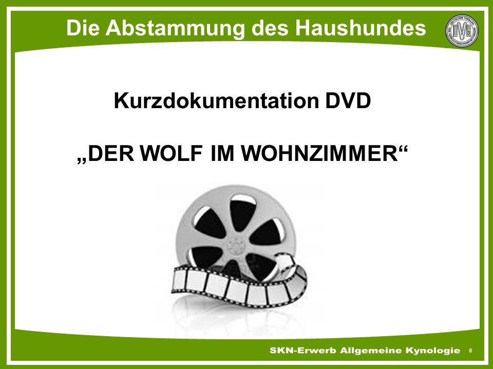 """6 Die Abstammung des Haushundes Kurzdokumentation DVD """"DER WOLF IM WOHNZIMMER"""""""