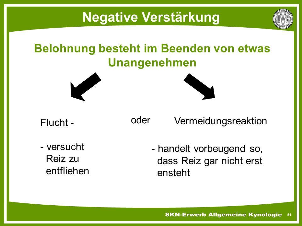 64 Negative Verstärkung Belohnung besteht im Beenden von etwas Unangenehmen Flucht - - versucht Reiz zu entfliehen oder Vermeidungsreaktion - handelt