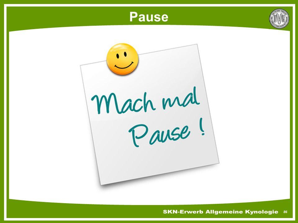 86 Pause