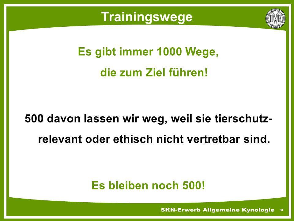 94 Trainingswege Es gibt immer 1000 Wege, die zum Ziel führen! 500 davon lassen wir weg, weil sie tierschutz- relevant oder ethisch nicht vertretbar s