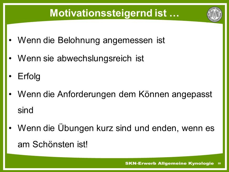 99 Motivationssteigernd ist … Wenn die Belohnung angemessen ist Wenn sie abwechslungsreich ist Erfolg Wenn die Anforderungen dem Können angepasst sind