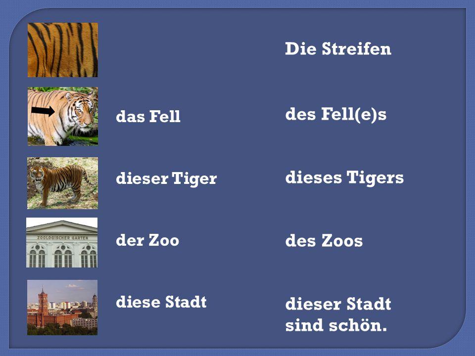 das Fell dieser Tiger der Zoo diese Stadt Die Streifen des Fell(e)s dieses Tigers des Zoos dieser Stadt sind schön.