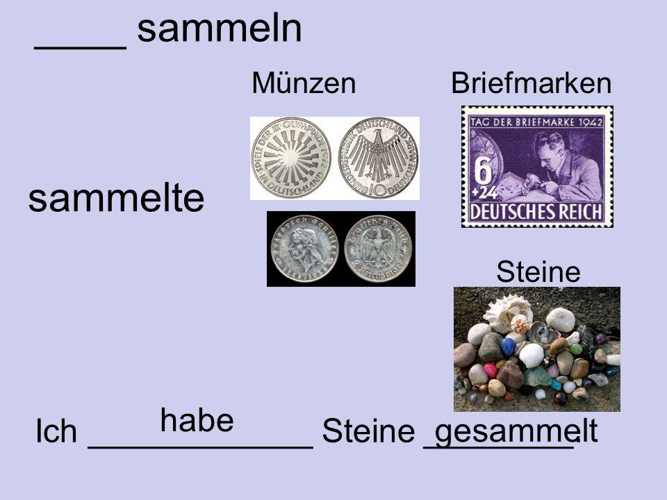 ____ sammeln Münzen Briefmarken sammelte Ich ____________ Steine ________. gesammelt Steine habe
