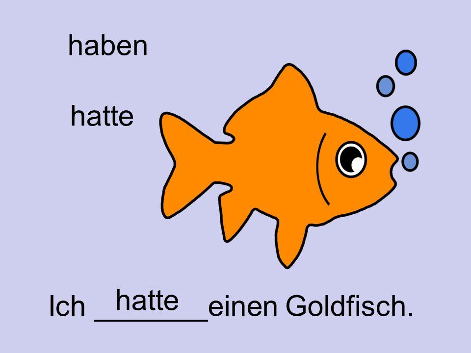 hatte Ich _______einen Goldfisch. haben hatte