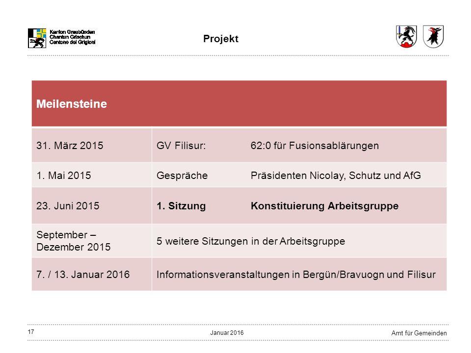17 Amt für Gemeinden Januar 2016 Projekt Meilensteine 31.