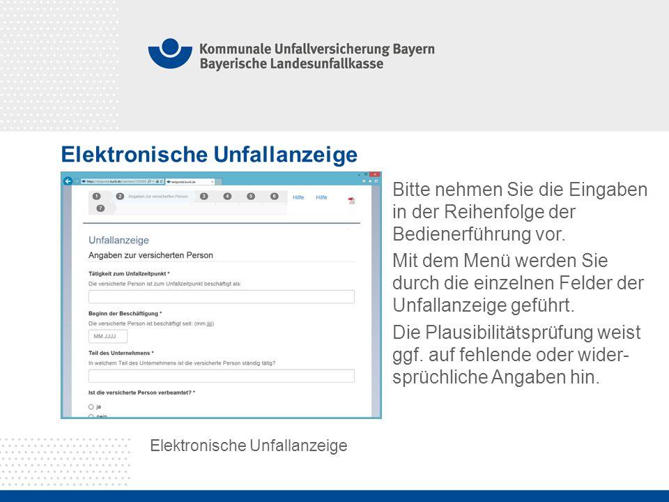 Elektronische Unfallanzeige Bitte nehmen Sie die Eingaben in der Reihenfolge der Bedienerführung vor.