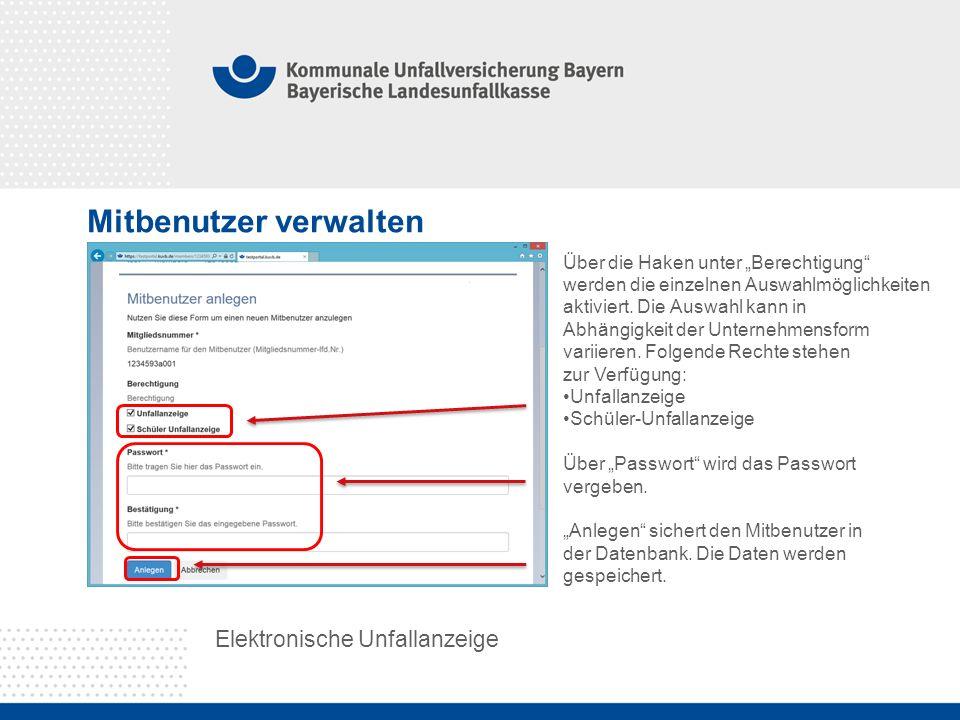 """Mitbenutzer verwalten Elektronische Unfallanzeige Über die Haken unter """"Berechtigung werden die einzelnen Auswahlmöglichkeiten aktiviert."""