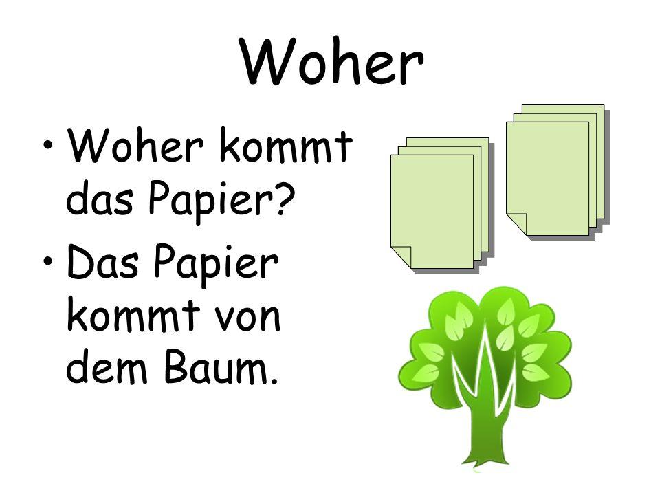 Woher Woher kommt das Papier? Das Papier kommt von dem Baum.