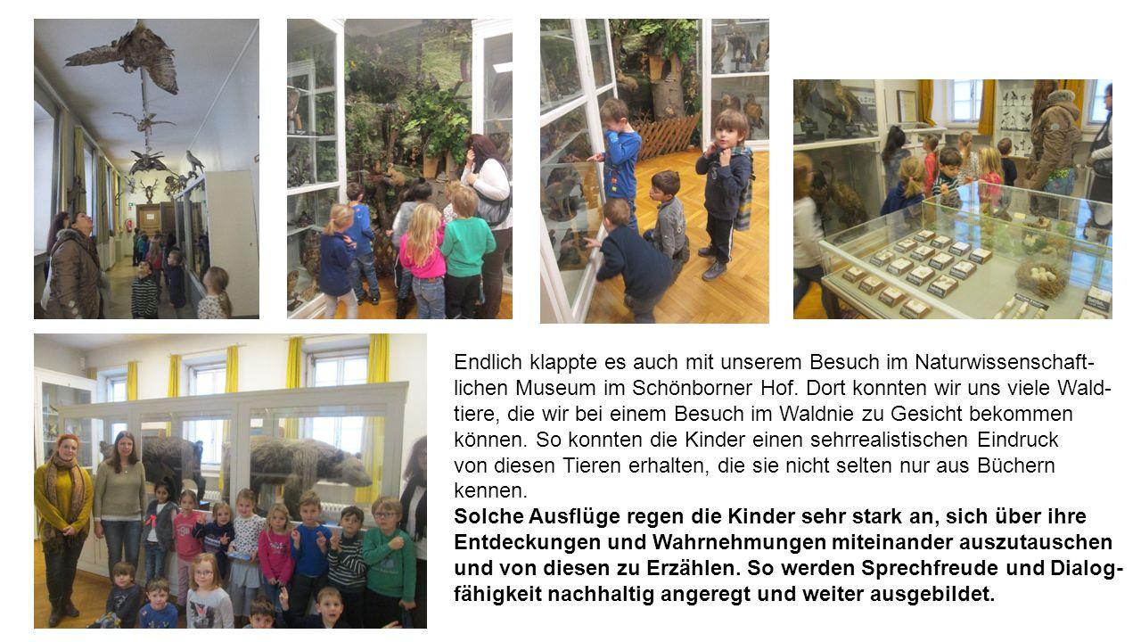 Endlich klappte es auch mit unserem Besuch im Naturwissenschaft- lichen Museum im Schönborner Hof.