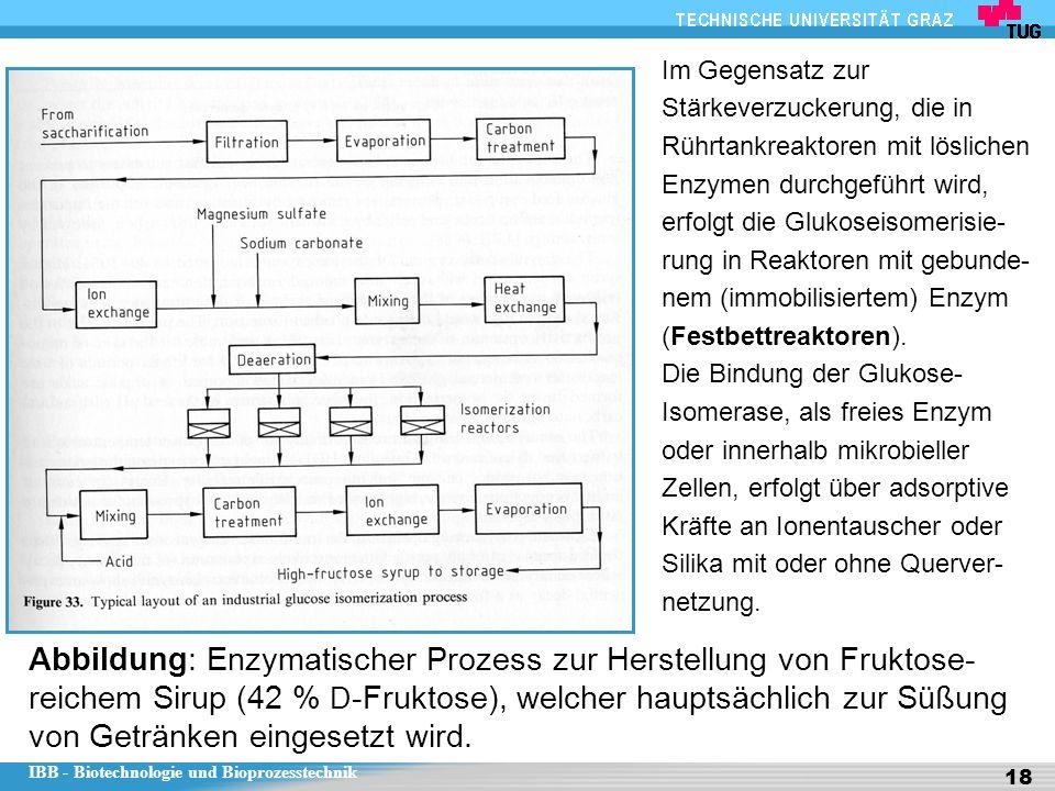 IBB - Biotechnologie und Bioprozesstechnik 18 Abbildung: Enzymatischer Prozess zur Herstellung von Fruktose- reichem Sirup (42 % D -Fruktose), welcher hauptsächlich zur Süßung von Getränken eingesetzt wird.