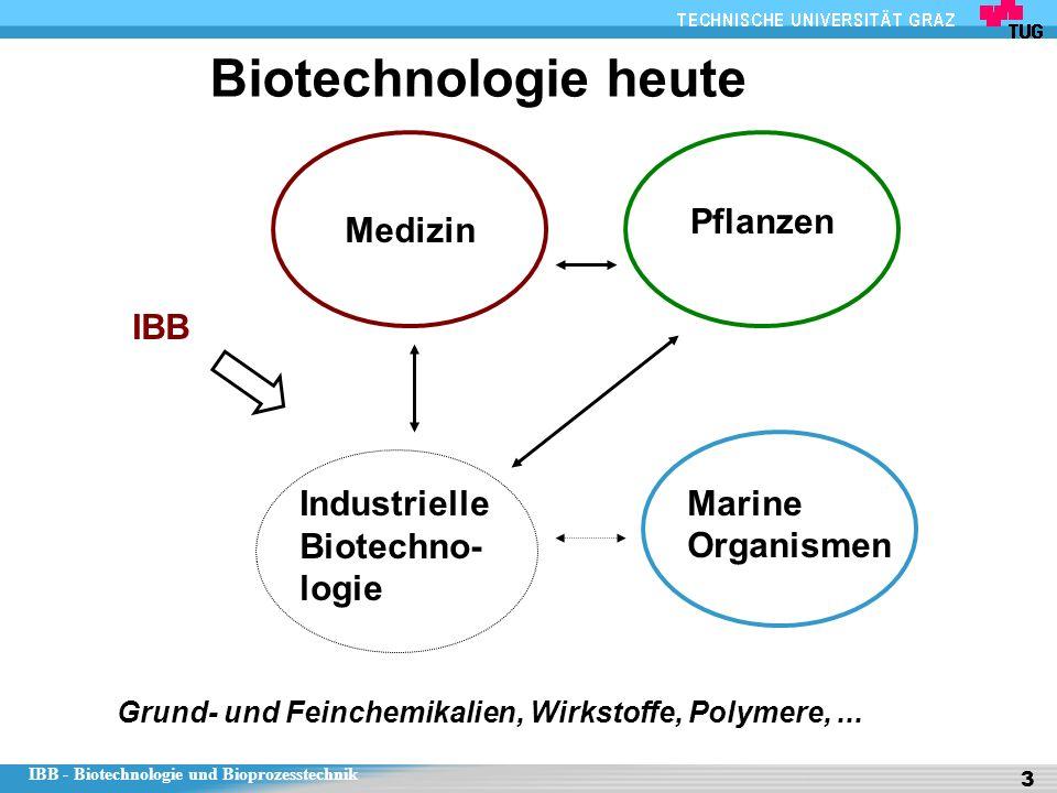 IBB - Biotechnologie und Bioprozesstechnik 3 Biotechnologie heute Medizin Marine Organismen Pflanzen Industrielle Biotechno- logie IBB Grund- und Feinchemikalien, Wirkstoffe, Polymere,...