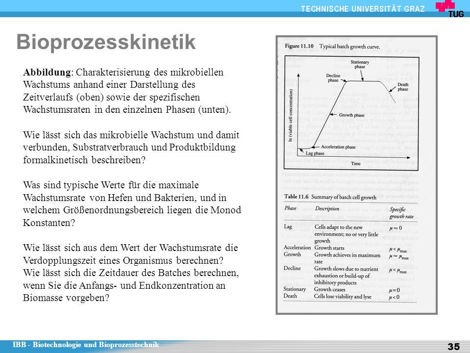 IBB - Biotechnologie und Bioprozesstechnik 35 Bioprozesskinetik Abbildung: Charakterisierung des mikrobiellen Wachstums anhand einer Darstellung des Zeitverlaufs (oben) sowie der spezifischen Wachstumsraten in den einzelnen Phasen (unten).