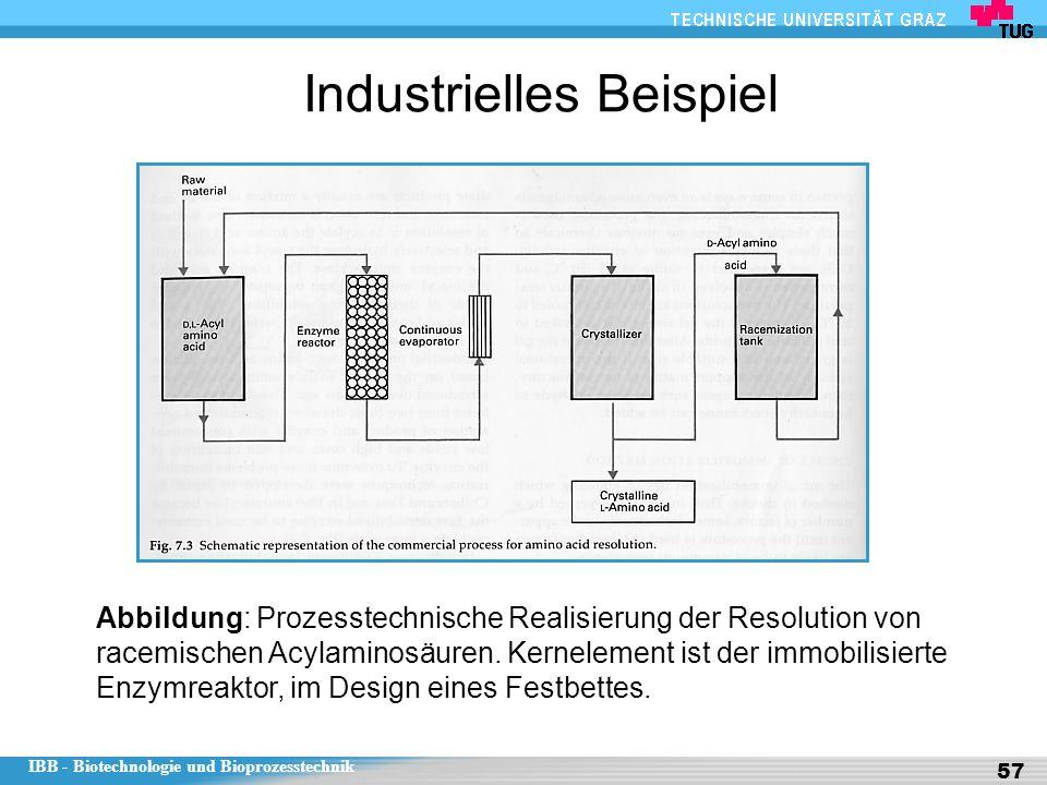 IBB - Biotechnologie und Bioprozesstechnik 57 Industrielles Beispiel Abbildung: Prozesstechnische Realisierung der Resolution von racemischen Acylaminosäuren.