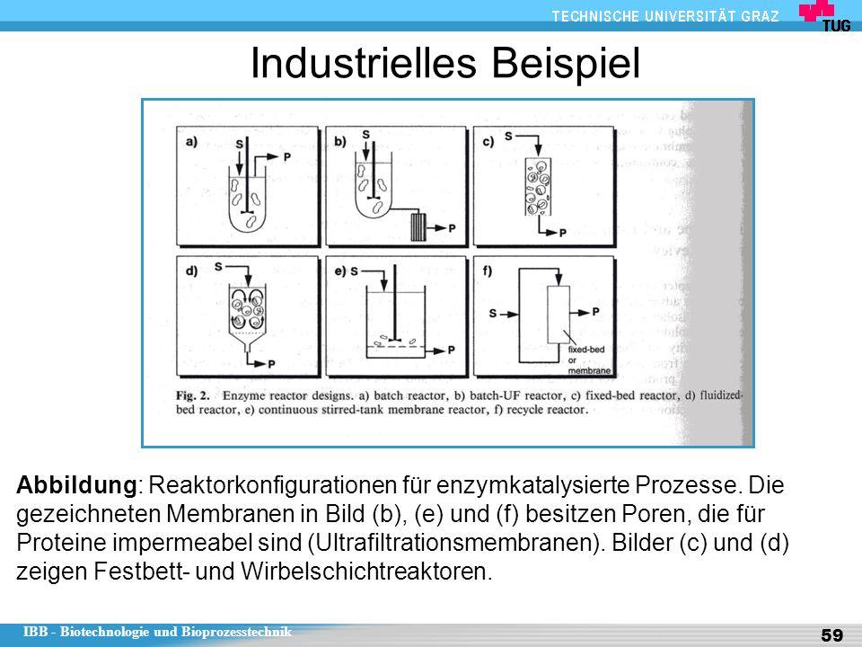 IBB - Biotechnologie und Bioprozesstechnik 59 Industrielles Beispiel Abbildung: Reaktorkonfigurationen für enzymkatalysierte Prozesse.