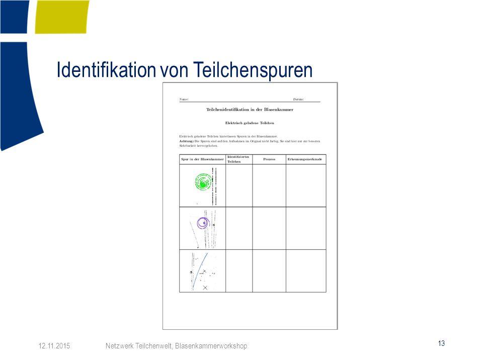 Identifikation von Teilchenspuren 13 12.11.2015 Netzwerk Teilchenwelt, Blasenkammerworkshop
