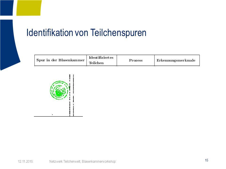 Identifikation von Teilchenspuren 15 12.11.2015 Netzwerk Teilchenwelt, Blasenkammerworkshop
