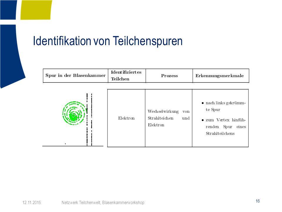 Identifikation von Teilchenspuren 16 12.11.2015 Netzwerk Teilchenwelt, Blasenkammerworkshop
