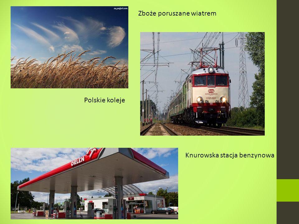 Zboże poruszane wiatrem Polskie koleje Knurowska stacja benzynowa