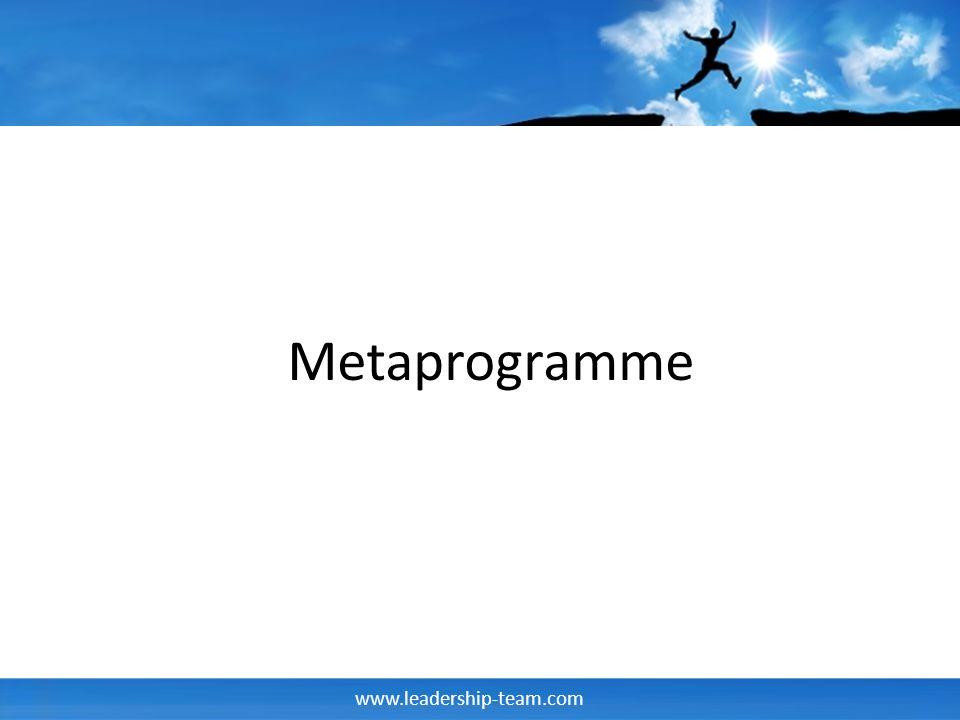 www.leadership-team.com Beispiel Metaprogramme Chunkgröße Ausprägungen – Spezifisch – Global/allgemein – Spezifisch/global – Global spezifisch Frage: Erzählen Sie von Ihrer Bachelorarbeit
