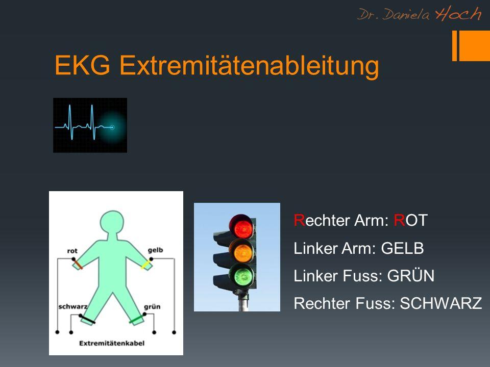 EKG Extremitätenableitung Rechter Arm: ROT Linker Arm: GELB Linker Fuss: GRÜN Rechter Fuss: SCHWARZ