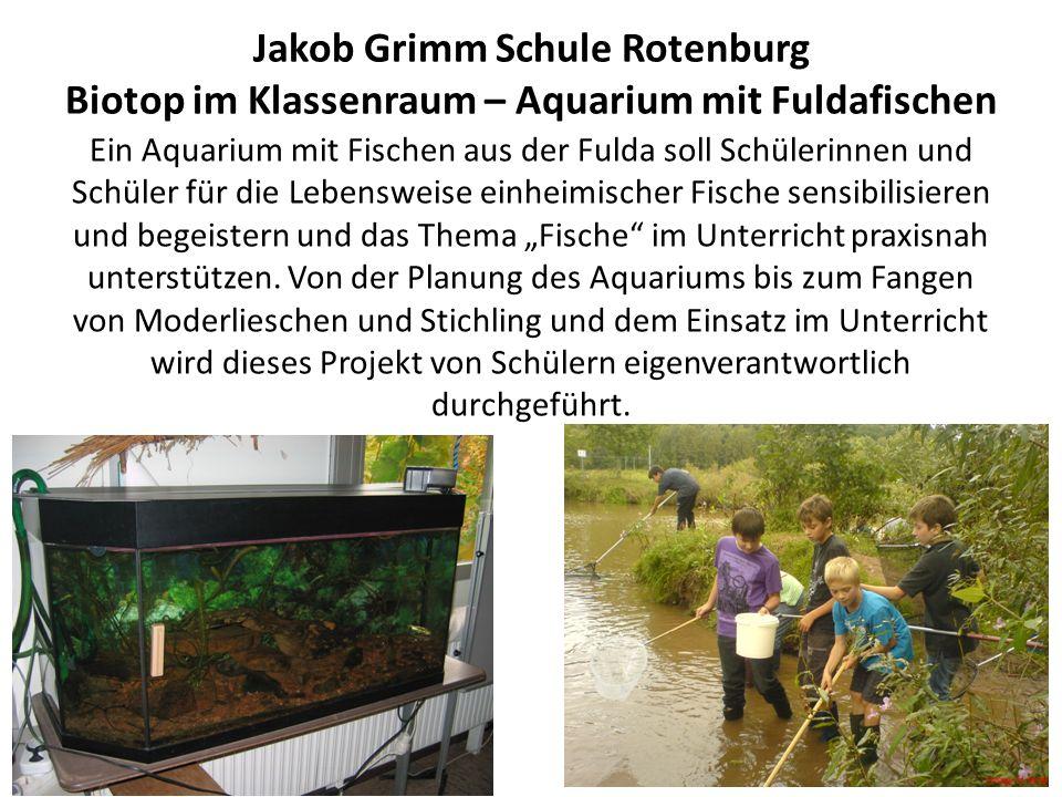 Jakob Grimm Schule Rotenburg Biotop im Klassenraum – Aquarium mit Fuldafischen Ein Aquarium mit Fischen aus der Fulda soll Schülerinnen und Schüler für die Lebensweise einheimischer Fische sensibilisieren und begeistern und das Thema Fische im Unterricht praxisnah unterstützen.